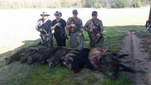 Hog hunting videos